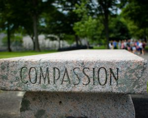 Values in Action and compassion